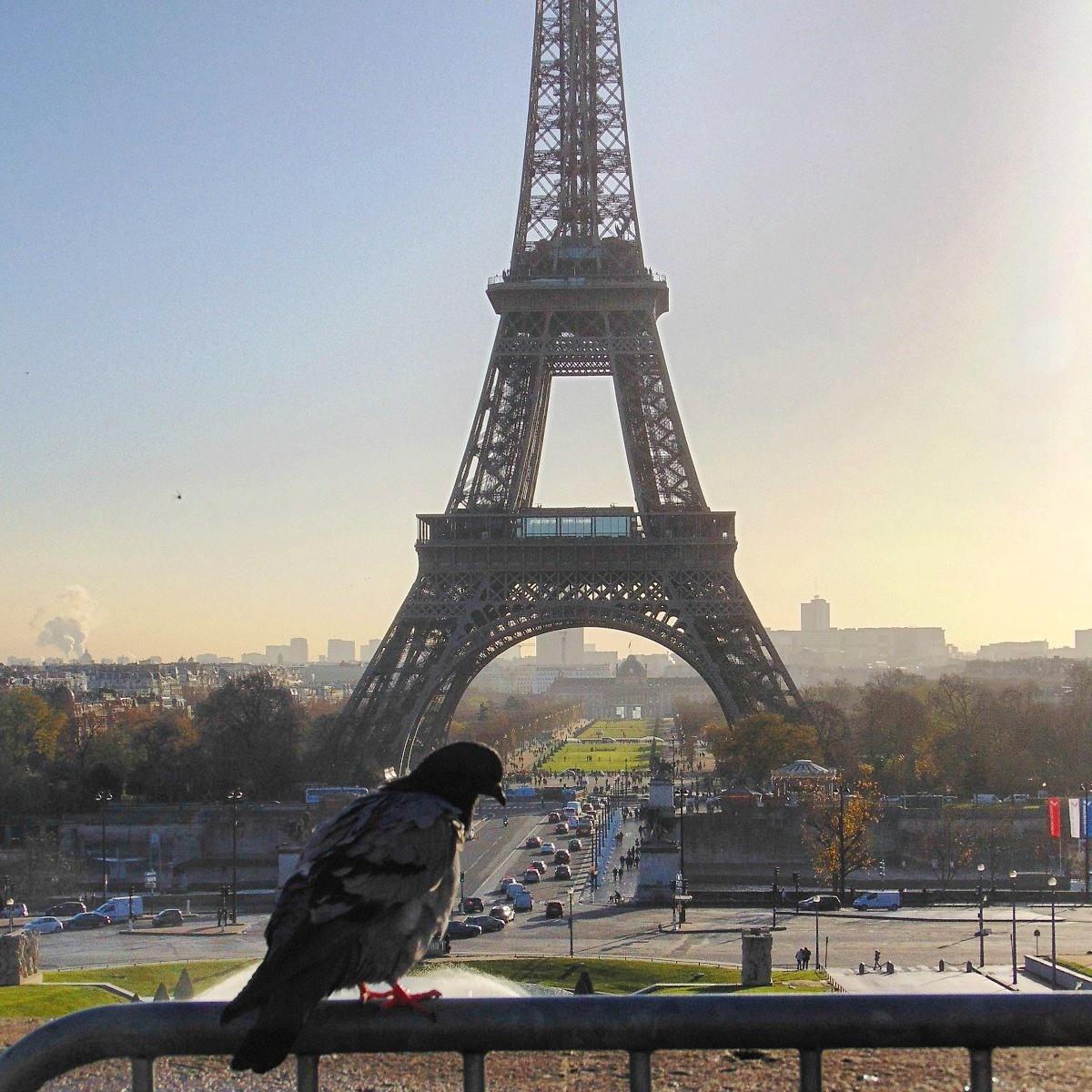 Paryż Wieża Eiffla, paryż romantyczne miejsca
