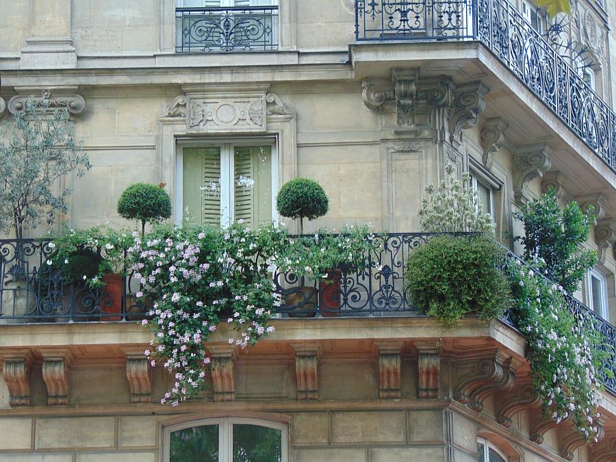jak znaleźć mieszkanie w paryżu