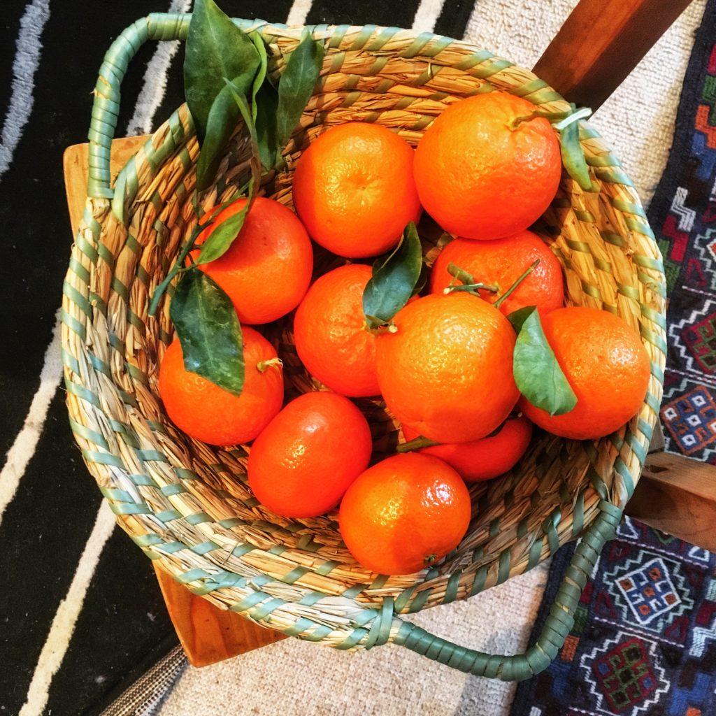 Skąd się wzięły mandarynki i klementynki.