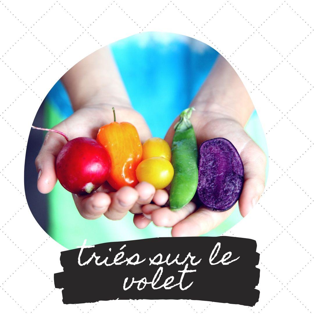 """Dlaczego """"triés sur le volet"""" oznacza bardzo ostrą selekcję np. w jakimś bardzo ekskluzywnym miejscu, czy to przy zapisach do renomowanej uczelni, czy przy wejściu do dyskoteki mającej tak zwane ambicje."""