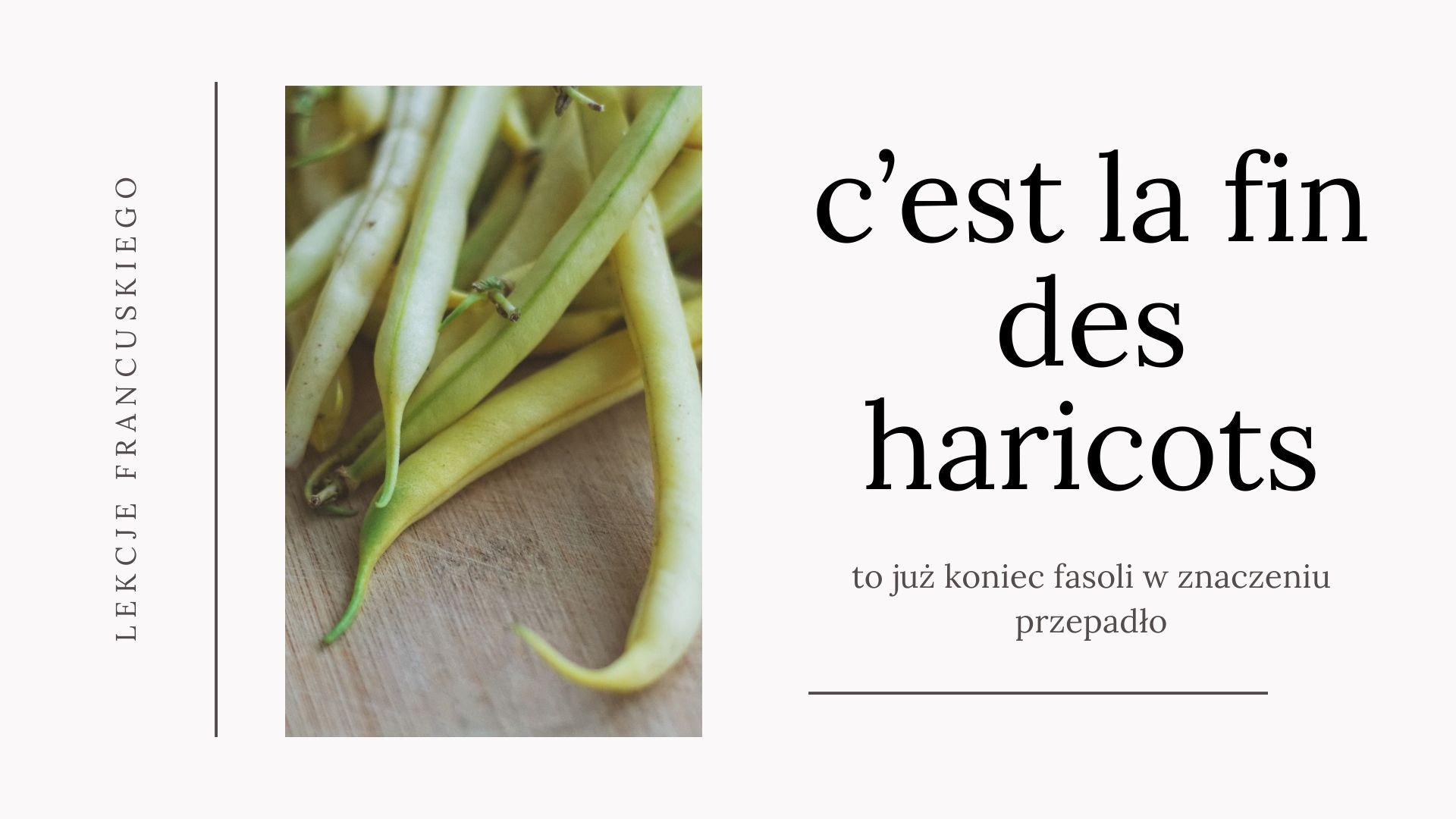 H nieme i h przydechowe w języku francuskim.